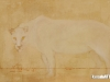 Gerel Dzjind - Panther that came in a dream - Oil on canvas - 73x130 cm