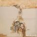 Gerel Dzjind - Untitled - Oil on canvas - 100x100 cm